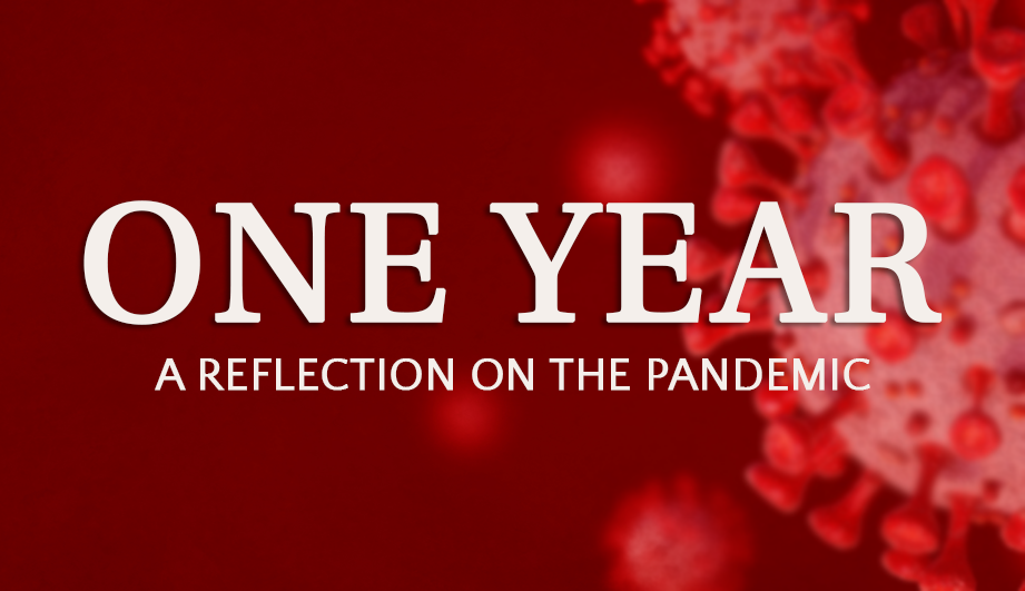 One Year a relection on the pandemic